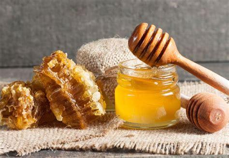 Manuka Honey Found To Fight Growth Of