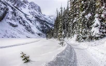 Winter Mountain Snow Season Area Path Forest