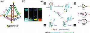 Dna As Scaffolding For Nanophotonic Structures