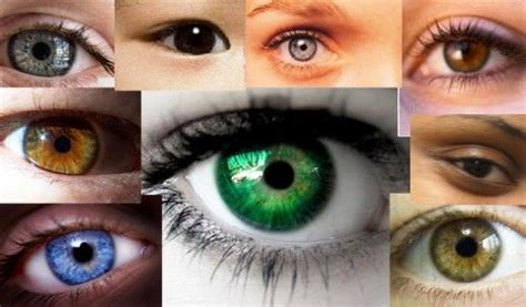 the rarest eye color rarest eye color in humans colors and the o jays