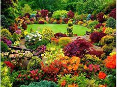 Jardin coloré Idées et inspirations pour garnir son