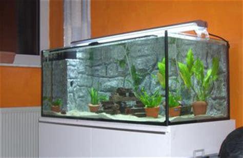 starting  aquarium business chroncom