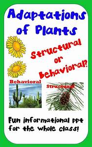 Plant Adaptations - Structural Or Behavioral