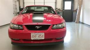 2003 Ford Mustang Mach 1 – $25,000 – Auto Seller Marketing