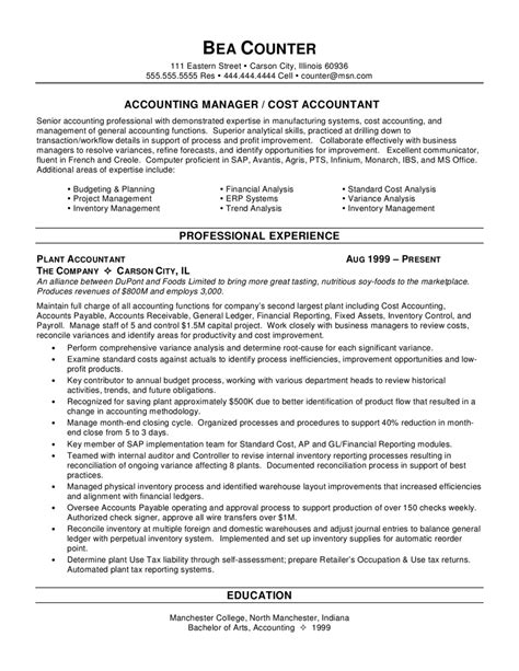 Sle Accounting Resumes by Accounting Resume Skills Project Scope Template
