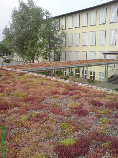 Garten Landschaftsbau Erfurt by Unternehmen Junne Gartendesign Gartengestaltung