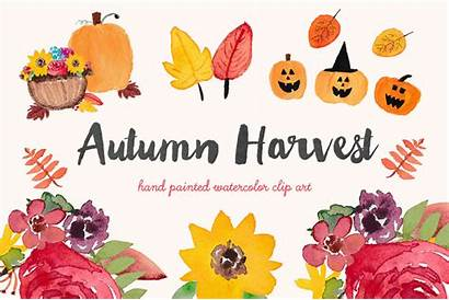 Harvest Autumn Watercolor Clip Fall Clipart Leaves