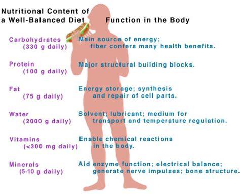 bodys   vitamins  minerals   diet