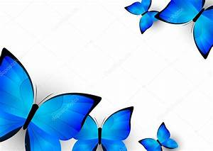 Mariposa Azul Fondo De Collection 11+ Wallpapers