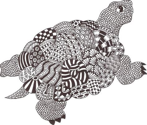 zentangle turtle google search color pages animal