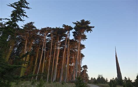 life presidios historic forest