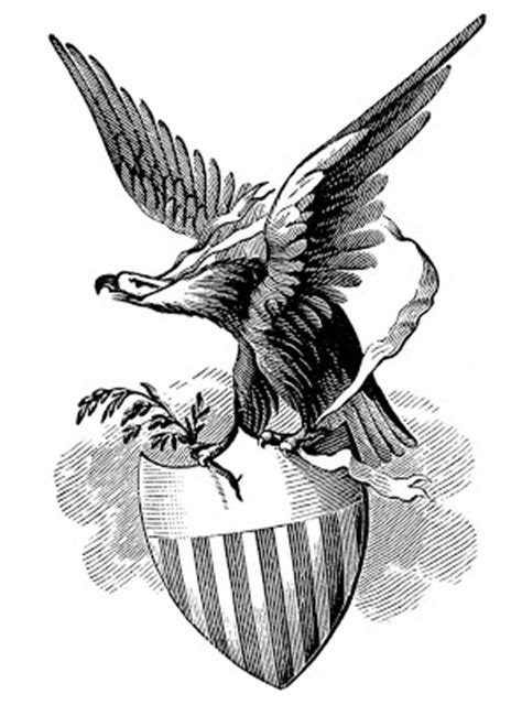 vintage patriotic image eagle  shield  graphics