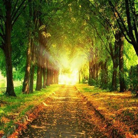 Natural Picture Download Impremedianet