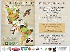International Migratory Bird Day Southwest Wildlife