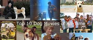 Top 10 Dog Movies Of All-Time