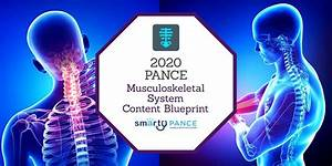 2020 Pance Musculoskeletal System Content Blueprint Study