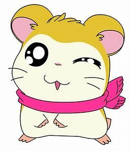 best ham-ham and why? - Hamtaro - Fanpop