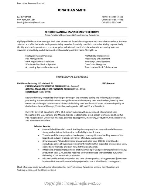 View Resume Format by Simply Executive Resume Format Best Resume Format For