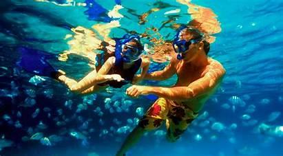 Riviera Maya Cancun Snorkeling Bali Snorkel Playa