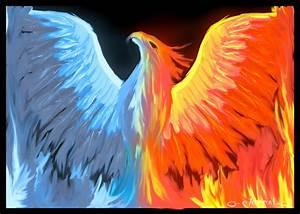 phoenix rising favourites by subtleruffian on DeviantArt