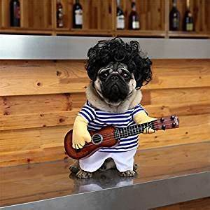 DELIFUR Pet Guitar Costume Dog Costumes Halloween
