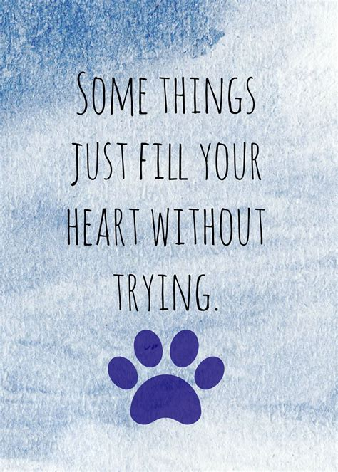 Some Things Dog Quote Saying Fordogtrainers
