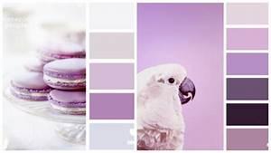 Welche Farbe Zu Lila : welche farbe f r k che 85 ideen f r fronten und wandfarbe ~ Bigdaddyawards.com Haus und Dekorationen