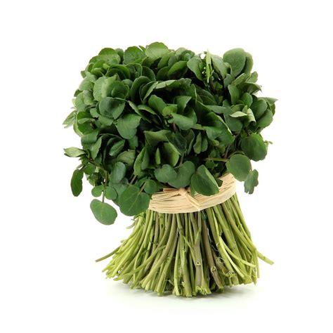 recettes de cuisine facile cresson légumes