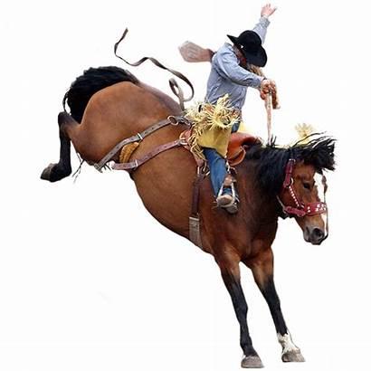 Cowboy Rodeo Transparent Horse Riding Bucking Clipart