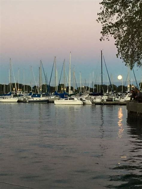 montrose harbor  chicago harbors slip dock mooring