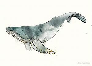 """""""Humpback Whale"""" by Amy Hamilton 