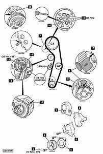 Tdi Timing Belt Replacement Interval Best Belt 2018