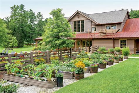 Edible Container Garden  The South's Best Gardens