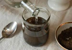 Настойка пчелиного подмора на водке от диабета