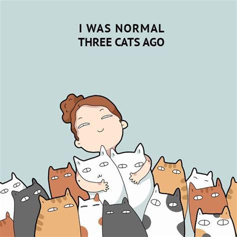 normal  cats   funny doodles  cat