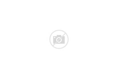 Holocaust Remembrance International Memorial Museum States Many