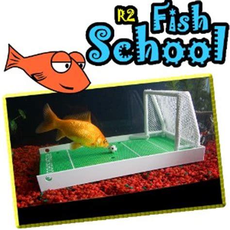 l 233 cole des poissons aquarium boutique www o pentech