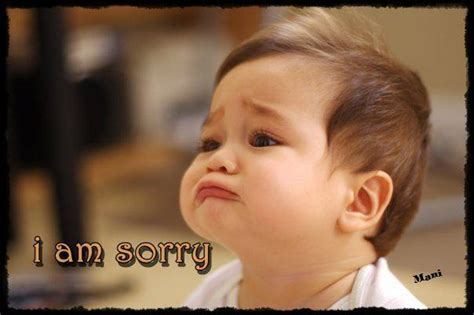 I Am Sorry Meme - i m am sorry meme lds s m i l e