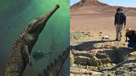 Scientists Discover Extinct 30-foot