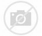 Jane Hallaren - Rotten Tomatoes