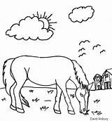 Coloring Iarba Calul Paste Cu Colorat Kuda Horse Planse Animals Korner Cal Picnic Animal Clopotel Grazing Gambar sketch template