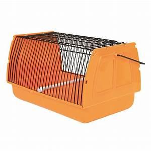 Transportbox Für Fische :  ~ Michelbontemps.com Haus und Dekorationen