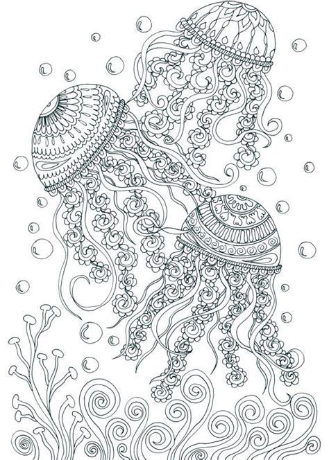 treasures   ocean adult coloring pages  joenay