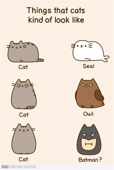 1000+ Images About Pusheen ) On Pinterest  Pusheen Cat