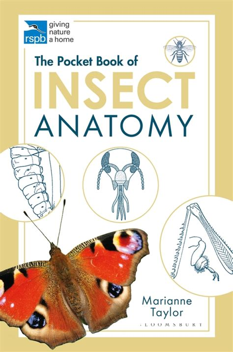 The Pocket Book of Insect Anatomy (RSPB) Marianne Taylor ...