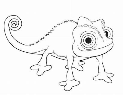 Tangled Coloring Pascal Pages Rapunzel Printable Clip