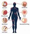 Symptoms and Treatment | Dengue | CDC