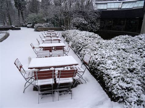Stuehle Im Schnee by Www Zoo Wuppertal Net Tiernachrichten Februar 2017 Aus