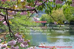 Lovable Images Life Inspirational Quotes With Images Free