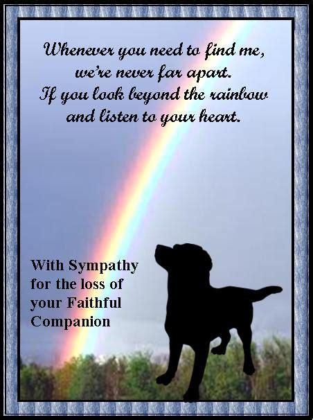 pet sympathy card pets  devoted companions
